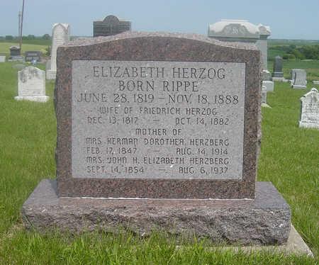 HERZOG, ELIZABETH - Page County, Iowa | ELIZABETH HERZOG