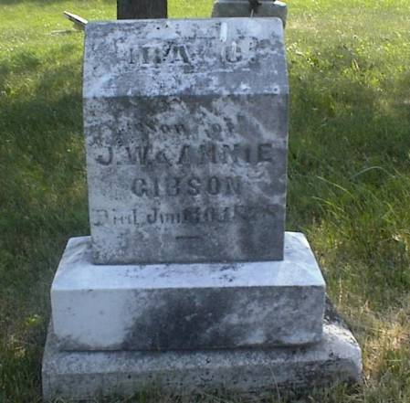 GIBSON, IRA C. - Page County, Iowa | IRA C. GIBSON