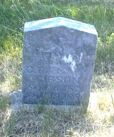 GIBSON, ROY S. - Page County, Iowa | ROY S. GIBSON