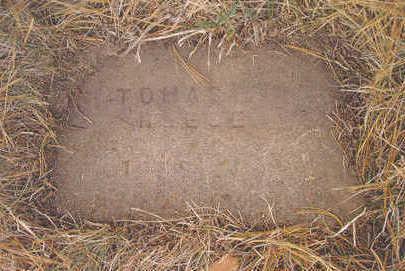 REESE, THOMAS I. - Page County, Iowa | THOMAS I. REESE