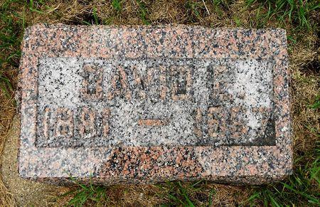 BRODIGAN, DAVID EDWARD - Palo Alto County, Iowa | DAVID EDWARD BRODIGAN