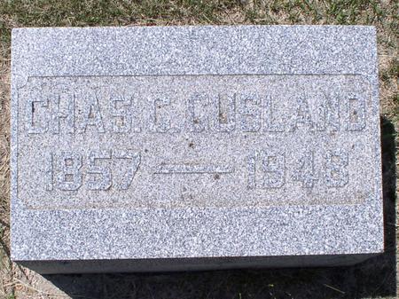 GUSLAND, CHAS C - Palo Alto County, Iowa   CHAS C GUSLAND