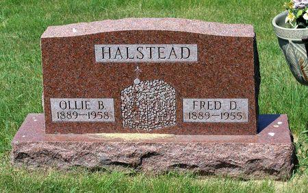 HALSTEAD, FRED D. - Palo Alto County, Iowa   FRED D. HALSTEAD