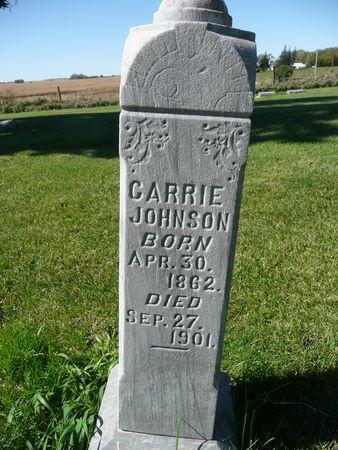 JOHNSON, CARRIE - Palo Alto County, Iowa | CARRIE JOHNSON