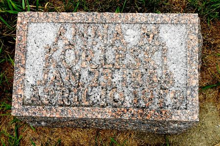 FREDERICKSON KORLESKI, ANNA MARIE - Palo Alto County, Iowa | ANNA MARIE FREDERICKSON KORLESKI