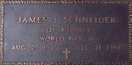 SCHNEIDER, JAMES - Palo Alto County, Iowa   JAMES SCHNEIDER