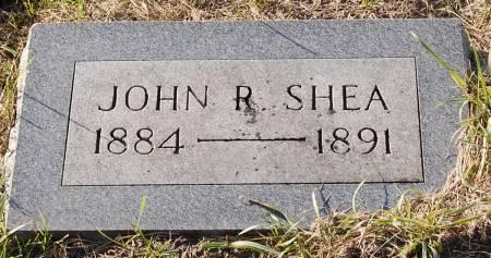 SHEA, JOHN R. - Palo Alto County, Iowa   JOHN R. SHEA