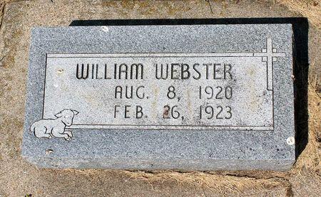 WEBSTER, WILLIAM - Palo Alto County, Iowa | WILLIAM WEBSTER