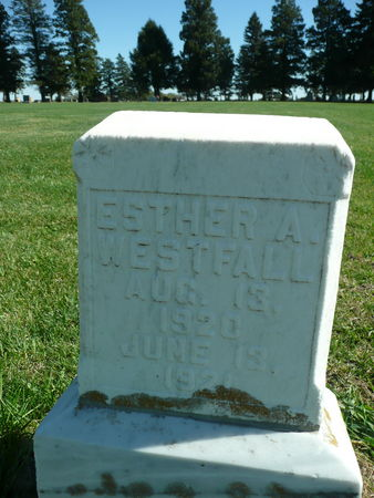 WESTFALL, ESTHER - Palo Alto County, Iowa | ESTHER WESTFALL