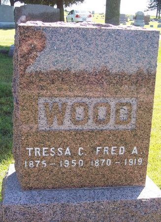 WOOD, TRESSA C - Palo Alto County, Iowa | TRESSA C WOOD