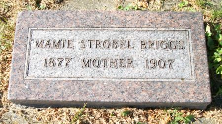 STROBEL BRIGGS, MAMIE - Plymouth County, Iowa | MAMIE STROBEL BRIGGS