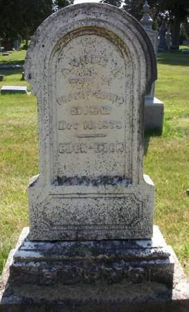 BURNS, ANNIE L. - Plymouth County, Iowa | ANNIE L. BURNS
