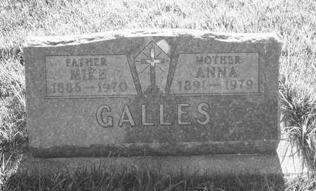 GALLES, MIKE - Plymouth County, Iowa | MIKE GALLES