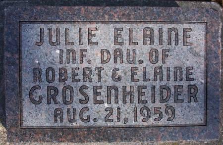 GROSENHEIDER, JULIE ELAINE - Plymouth County, Iowa | JULIE ELAINE GROSENHEIDER