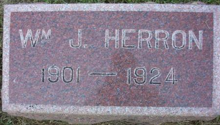 HERRON, WILLIAM JOHN - Plymouth County, Iowa   WILLIAM JOHN HERRON