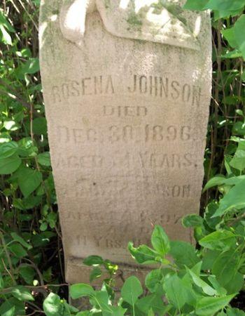 JOHNSON, ROSENA - Plymouth County, Iowa | ROSENA JOHNSON