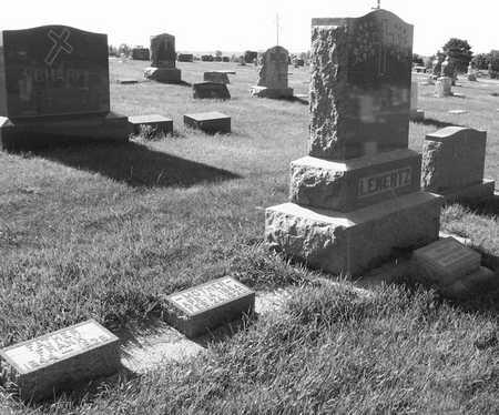 LENERTZ, FAMILY PLOT - Plymouth County, Iowa   FAMILY PLOT LENERTZ