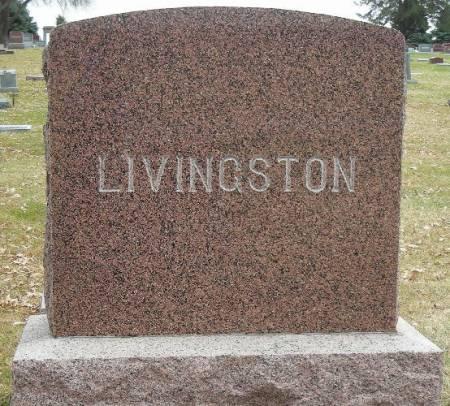 LIVINGSTON, ALEXANDER S. - Plymouth County, Iowa   ALEXANDER S. LIVINGSTON