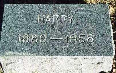 MANNING, HARRY HARRISON - Plymouth County, Iowa   HARRY HARRISON MANNING