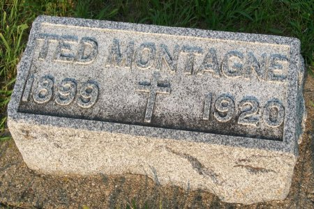 MONTAGNE, TED - Plymouth County, Iowa | TED MONTAGNE