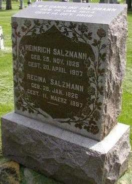 SALZMANN, HEINRICH - Plymouth County, Iowa | HEINRICH SALZMANN