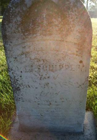 SCHIPPER, JOHNNIE - Plymouth County, Iowa   JOHNNIE SCHIPPER