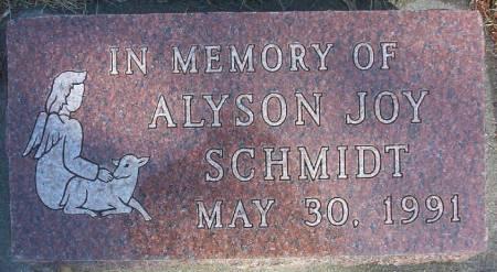 SCHMIDT, ALYSON JOY - Plymouth County, Iowa | ALYSON JOY SCHMIDT