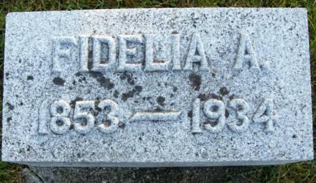 TRENERY, FIDELIA A. - Plymouth County, Iowa | FIDELIA A. TRENERY