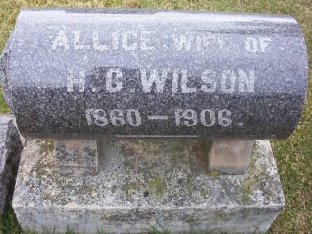 WILSON, ALLICE - Plymouth County, Iowa   ALLICE WILSON