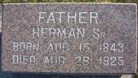 WILTS, HERMAN SR. - Plymouth County, Iowa | HERMAN SR. WILTS