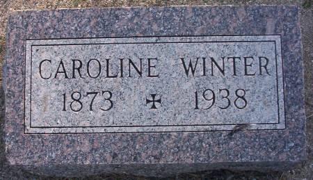 WINTER, CAROLINE - Plymouth County, Iowa | CAROLINE WINTER
