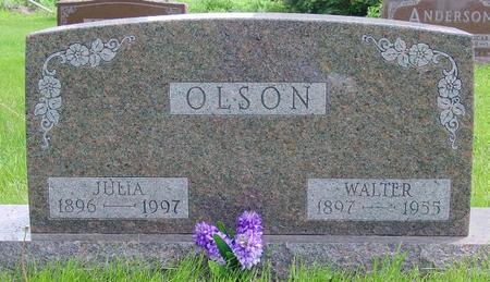 OLSON, WALTER - Pocahontas County, Iowa | WALTER OLSON