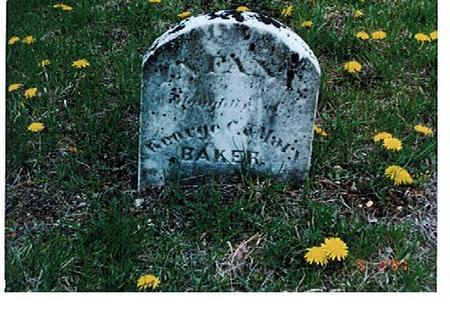 BAKER, INFANT - Polk County, Iowa | INFANT BAKER