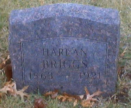 BRIGGS, HARLAN OR HIRAM - Polk County, Iowa | HARLAN OR HIRAM BRIGGS