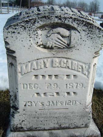 CAREY, MARY B. - Polk County, Iowa | MARY B. CAREY