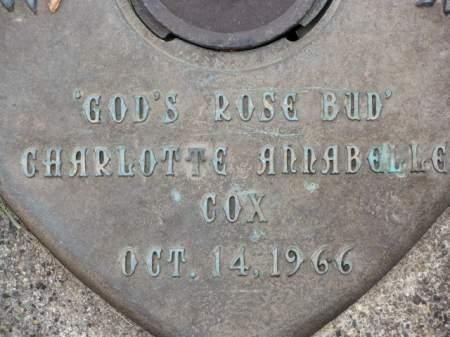 COX, CHARLOTTE  ANNABELLE - Polk County, Iowa | CHARLOTTE  ANNABELLE COX
