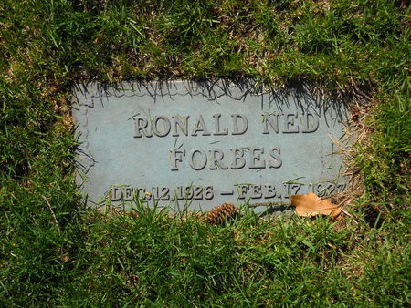 FORBES, RONALD NED - Polk County, Iowa | RONALD NED FORBES