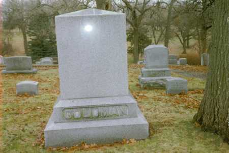 GOLDMAN, DAVID - Polk County, Iowa | DAVID GOLDMAN