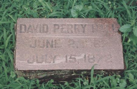 HALL, DAVID PERRY - Polk County, Iowa | DAVID PERRY HALL