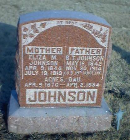 JOHNSON, AGNES - Polk County, Iowa | AGNES JOHNSON