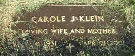 KLEIN, CAROLE J - Polk County, Iowa   CAROLE J KLEIN