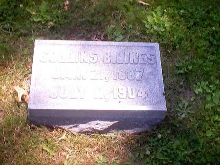 LIKES, COLLINS B. - Polk County, Iowa | COLLINS B. LIKES