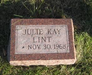 LINT, JULIE - Polk County, Iowa | JULIE LINT