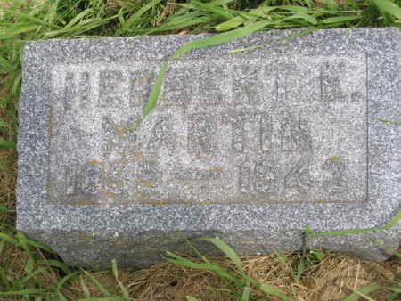 MARTIN, HERBERT E. - Polk County, Iowa | HERBERT E. MARTIN