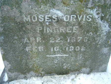 PINGREE, MOSES ORVIS - Polk County, Iowa | MOSES ORVIS PINGREE