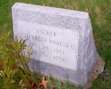 ROBESKY, ELIZABETH - Polk County, Iowa | ELIZABETH ROBESKY