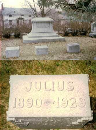 SAMISH, JULIUS - Polk County, Iowa | JULIUS SAMISH