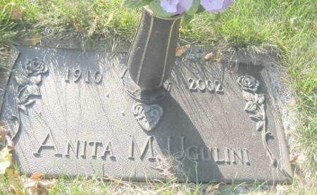 UGULINI, ANITA M - Polk County, Iowa | ANITA M UGULINI