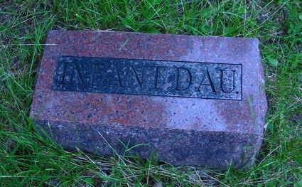 WARREN, INFANT DAUGHTER - Polk County, Iowa   INFANT DAUGHTER WARREN