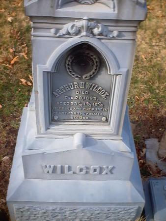 WILCOX, ARTHUR - Polk County, Iowa   ARTHUR WILCOX